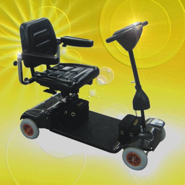 image of rabbit scooter